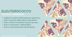 Erboristeria siciliana, la tua erboristeria online