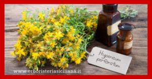 IPERICO ANTIDEPRESSIVO NATURALE Erboristeria siciliana, la tua erboristeria online
