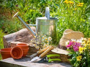 giardinaggio Erboristeria siciliana, la tua erboristeria online